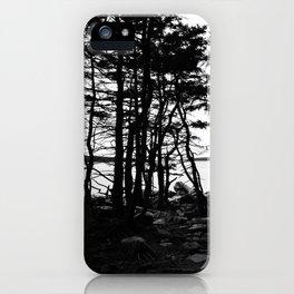Acadia Trees iPhone Case
