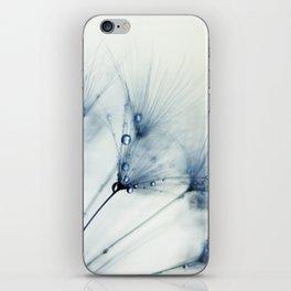 dandelion blue II iPhone Skin