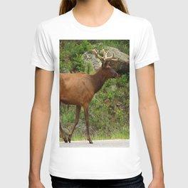 Walking On The Street T-shirt