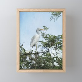 Cattle Egret In a Tree Framed Mini Art Print
