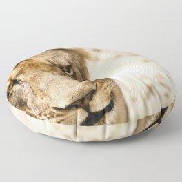 Primary Instinct Floor Pillow