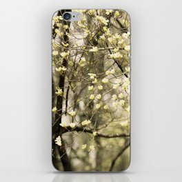 Let's Get Lost In The Dogwoods iPhone Skin