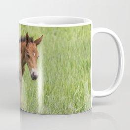 Little Colt Coffee Mug
