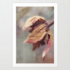 Flora No. 2 Art Print