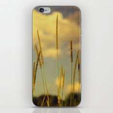 A Place to Breathe iPhone & iPod Skin