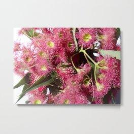 Gumtree Metal Print