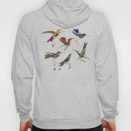 Six Colorful Hummingbirds Hoody