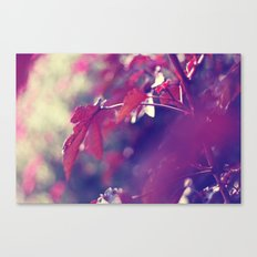 feeling like fall Canvas Print