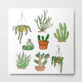 succulent pots Metal Print
