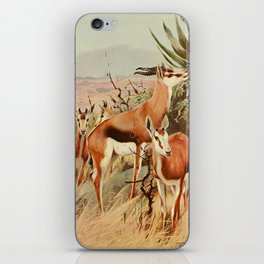 Kuhnert, Friedrich Wilhelm (1865-1926) - Wild Life of the World 1916 v.3 (Springbok) iPhone Skin