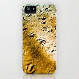 Eubrontes Giganteus iPhone Case