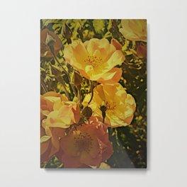 Vintage Climbing Roses Metal Print