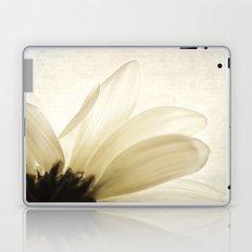 Translucent Laptop & iPad Skin