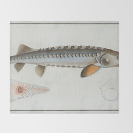 This is a vintage illustration of a Sturgeon fish originally produced in 1785. Throw Blanket