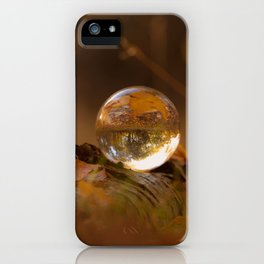 Colors of autumn in the deciduous forest iPhone Case