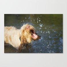 Make a BIG Splash Canvas Print