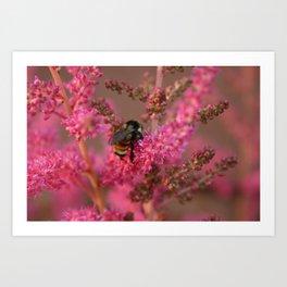 Bee Mine? Art Print