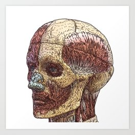 Face_Model Art Print