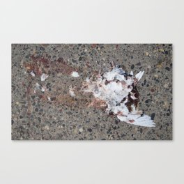 Dove; Exploded View, 2012. Canvas Print