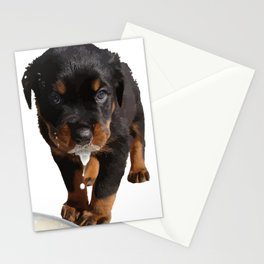 Cute Rottweiler Puppy Lapping Milk Vector Stationery Cards
