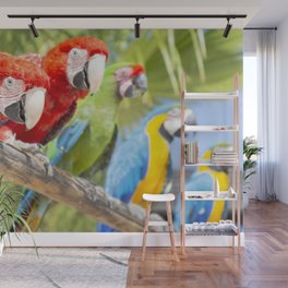 Curious macaws Wall Mural