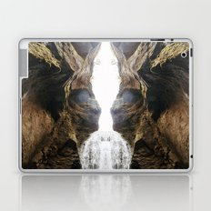 Symmetrical Canyon Laptop & iPad Skin
