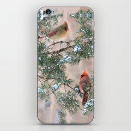 Winter Pair Cardinals (v) iPhone Skin