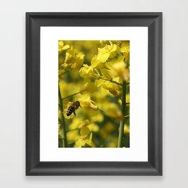 Bees Fly Framed Art Print