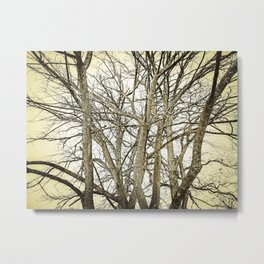 """Lines In Nature"" Metal Print"