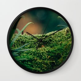 Japanese Moss Wall Clock