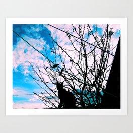Blue Shadow Crush Art Print