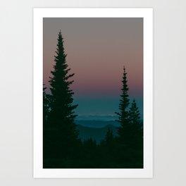 Blue Hour Pines Art Print