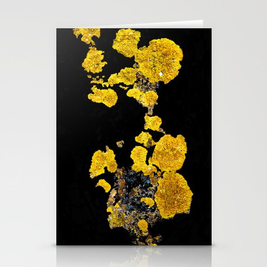 Yellow Lichen Stationery Cards