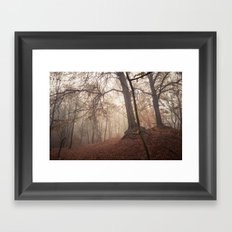 Autumn Fantasy : Mist and Mistery Framed Art Print
