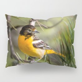 Oriole and Pine cone Pillow Sham