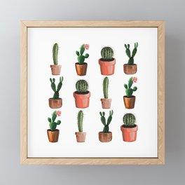 Various Cacti Framed Mini Art Print