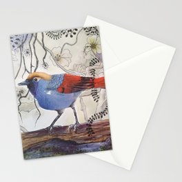 Just Be: Red-Tailed Laughing Thrush Stationery Cards