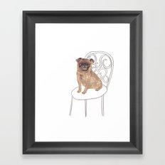 Pug on a chair Framed Art Print