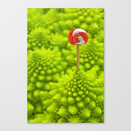 Romanesco Lollipop Canvas Print