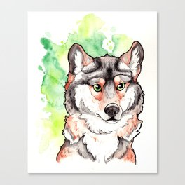 Mexican Gray Wolf Bust Canvas Print