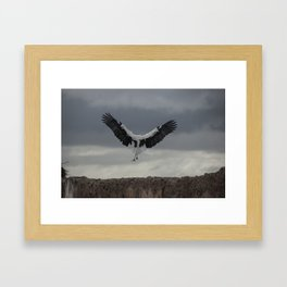 Spread your wings and land Framed Art Print