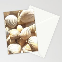 Sea Shells Collection Stationery Cards