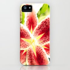 Lily star iPhone (5, 5s) Slim Case