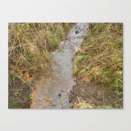 small river Canvas Print