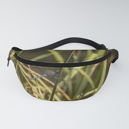 Dragonfly in the marsh Fanny Pack