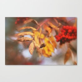 Autumn Vibes Canvas Print