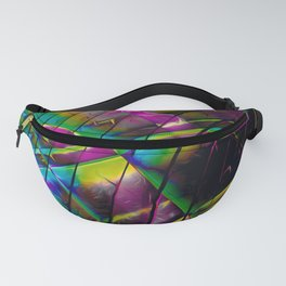 Planetary Fanny Pack