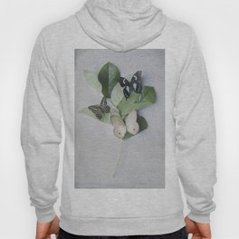 Butterfly Botanical II Hoody