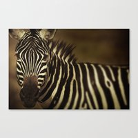 striped Canvas Prints featuring Striped by DIEGO ARROYO