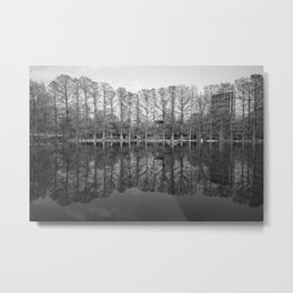 Forest Park Reflections Metal Print